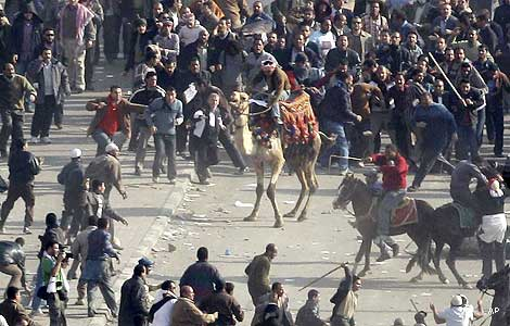 Egypt.Com - منتدي مصر